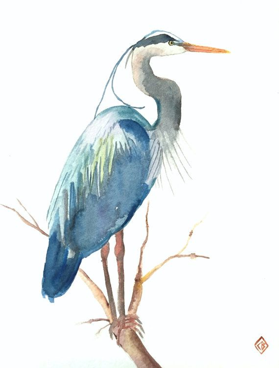 Great Blue Heron 8x10 Original Watercolor Painting Nature Art