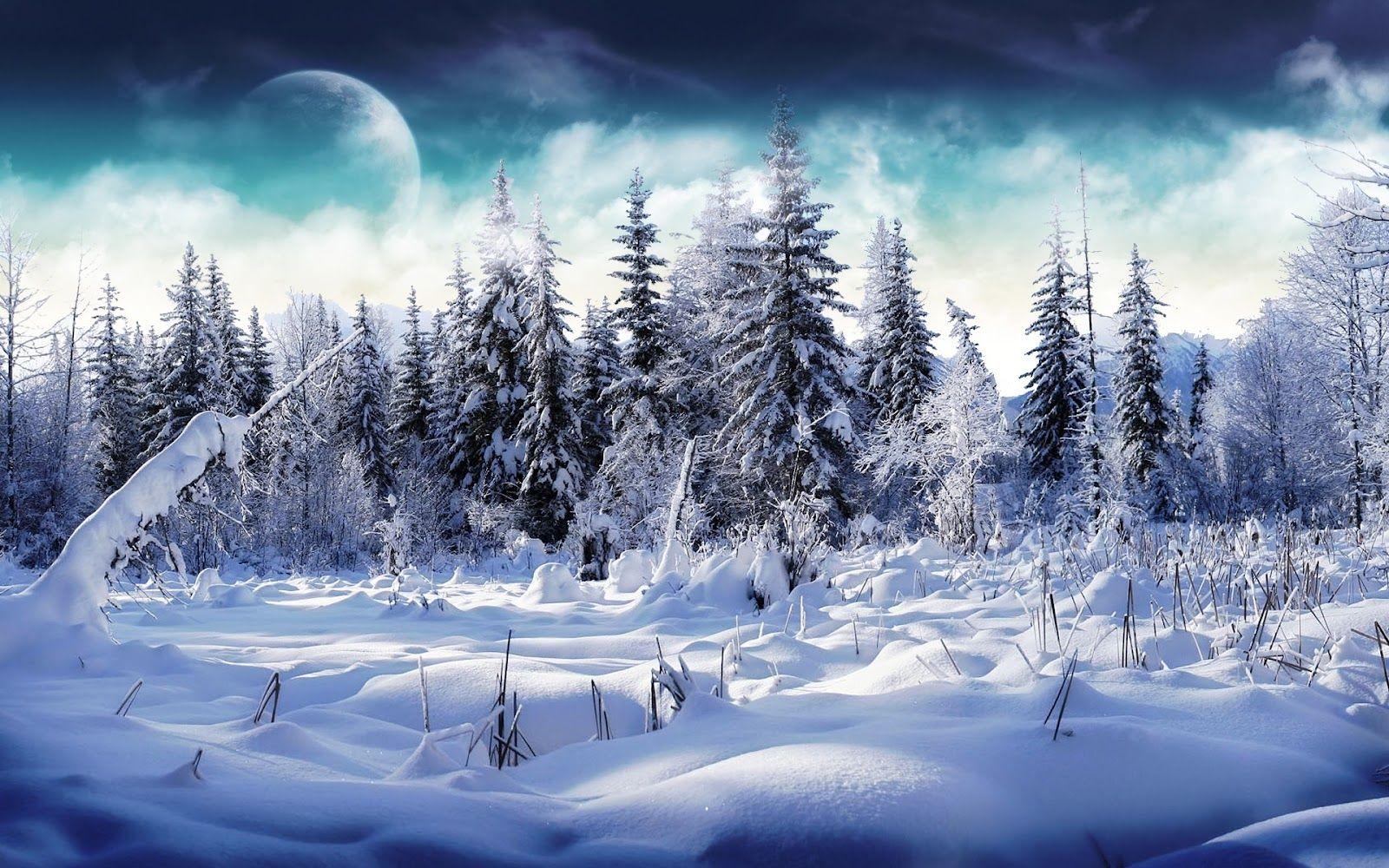 Winter Wallpaper 33 Jpg 1600 1000 Winter Landscape Winter Scenery Landscape Wallpaper