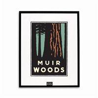 Framed Poster - Muir Woods