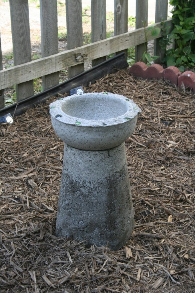 40 Lovely DIY Bird Bath Ideas To Invite Friendly Fliers In Your Yard