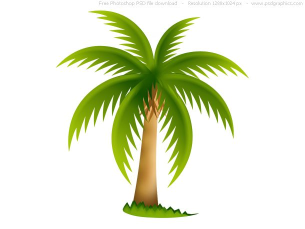 [+] Palm Tree Icon
