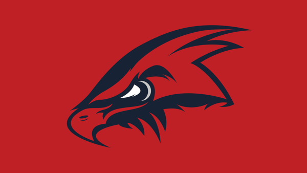 Blackhawks Hockey Logo Concept by Ed, via Behance
