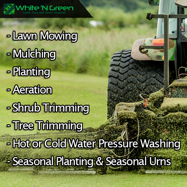 White N Green Is Providing Best Services Of Lawn Care Edmonton It Is Also Offering Full Commercial Lawn Care Landscaping Services Lawn Care Lawn Service Lawn