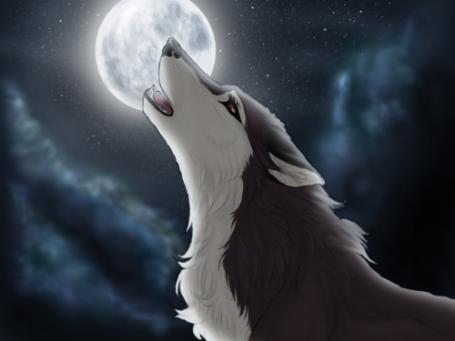Photo of anime wolf shared by Raika on We Heart It