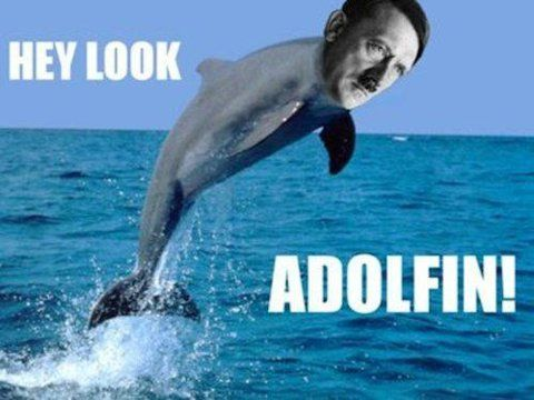 Omg, why do I think this is so hilarious???