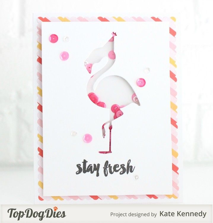 shake it by KateKennedy at @studio_calico