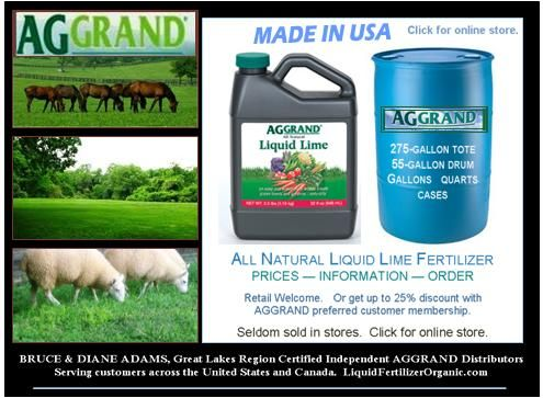 Lime Lawn Treatment Is Really The Boss Nutrient Calcium With Images Lawn Treatment Lawn Lime