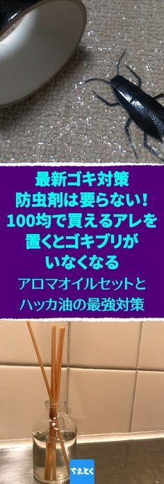 Photo of [Contromisure contro gli scarafaggi]Non c'è bisogno di repellenti per insetti disponibili in commercio!  Se metti qualcosa che puoi comprare per 100 yen, non ci saranno scarafaggi.