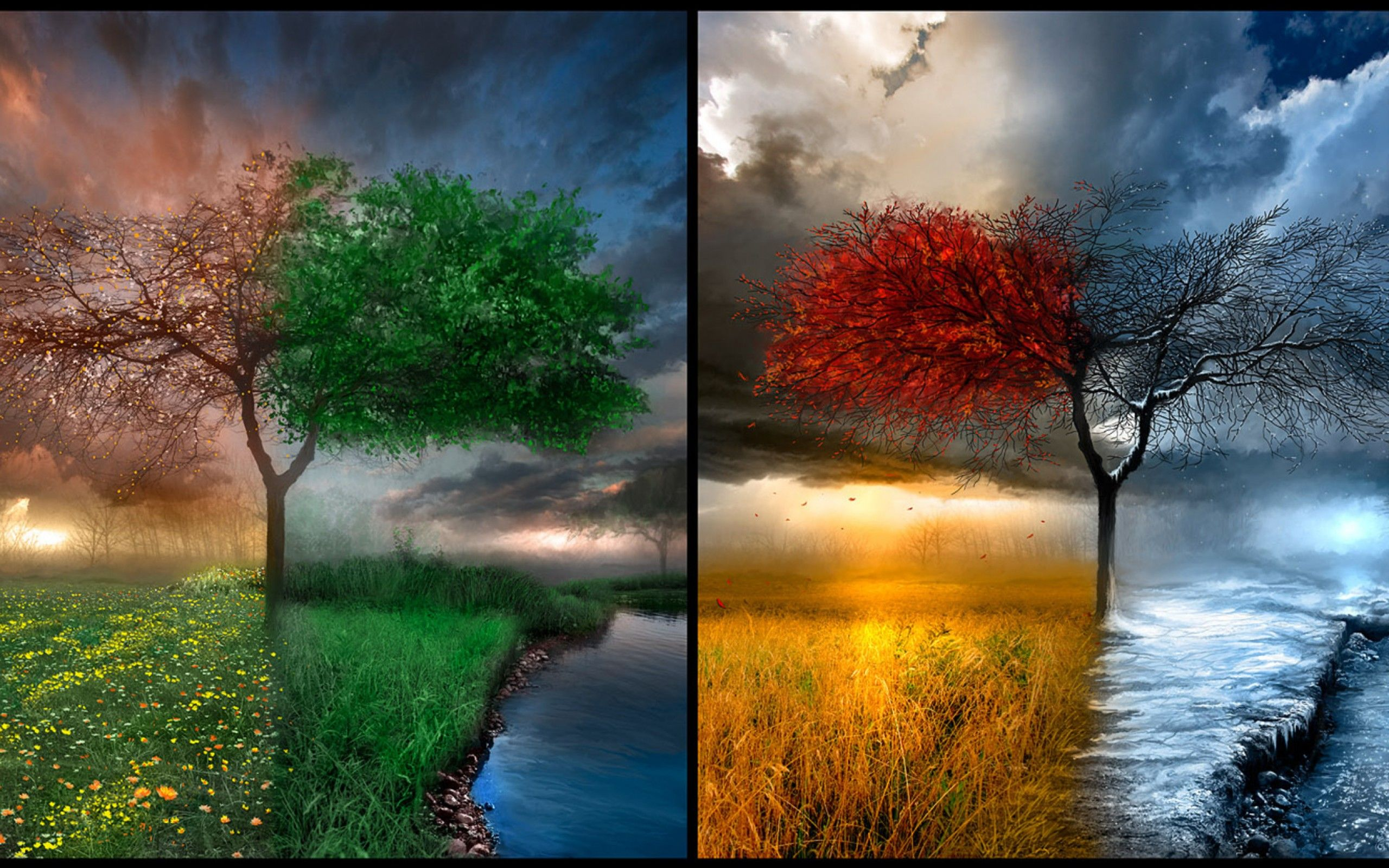 One Tree Four Times Of The Year Four Seasons Beautiful Nature Landscapes Desktop Wallpapers Awsome Lands Les Quatre Saisons Belle Nature Papier Peint D Art