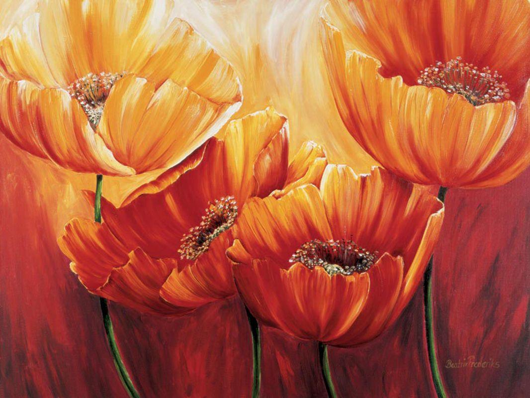 Цветы оранжевые постеры