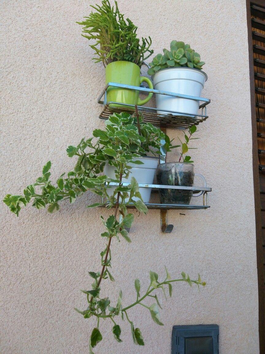 Porta Bagnoschiuma Da Doccia.Ex Porta Bagnoschiuma Da Doccia Riciclo Creativo Pinterest