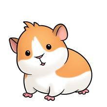 guinea pig clipart google search cute animals pinterest rh pinterest com clipart guinea pig guinea pig clip art cute