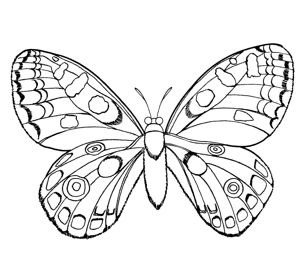 butterflies and insects coloring pages butterflies and insects kids printables coloring pages - Insects Coloring Pages