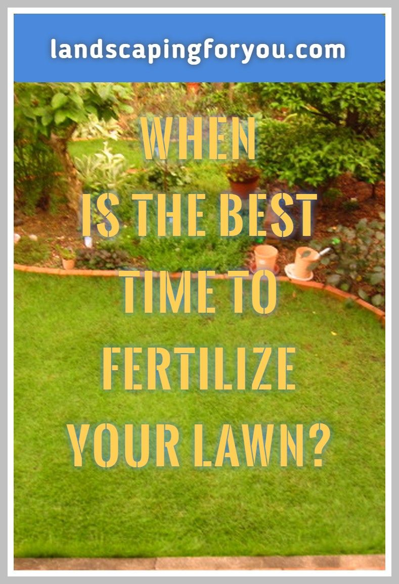 The Secrets You Need To Study When To Fertilize Lawn More