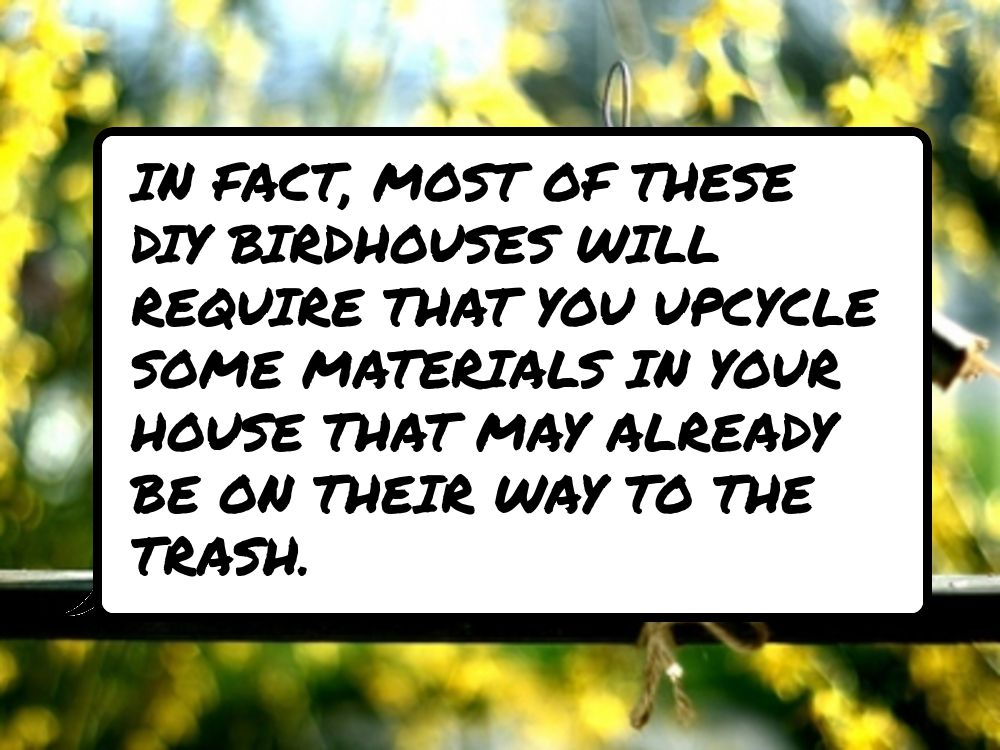In #fact, most of these DIY birdhouses will require that you upcycle some…