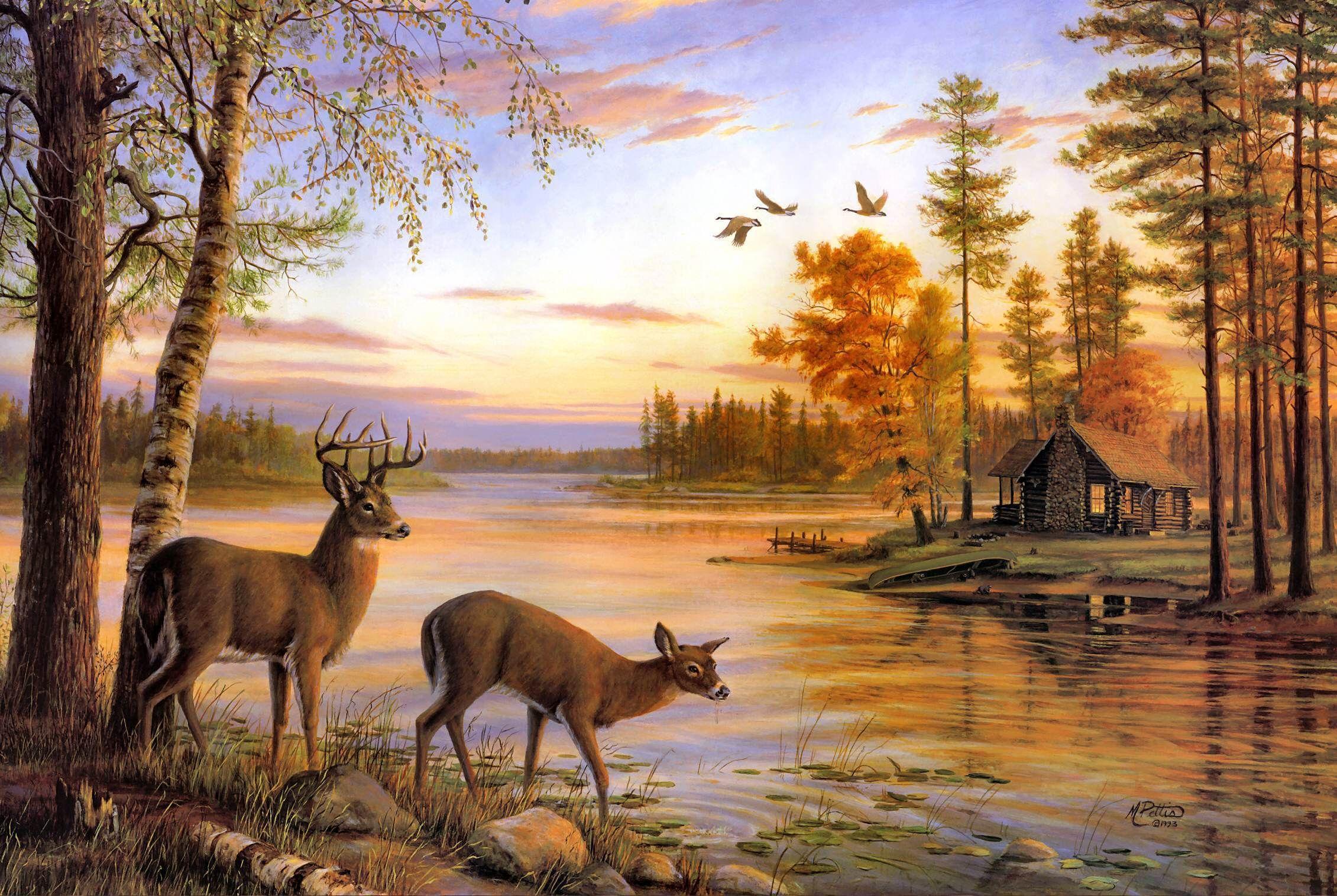 Download New Deer Wallpaper Wym In 2020 Deer Painting Deer Wallpaper Deer Art