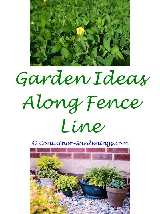 garden ideas with sheds - garden party invitation ideas.inexpensive ...