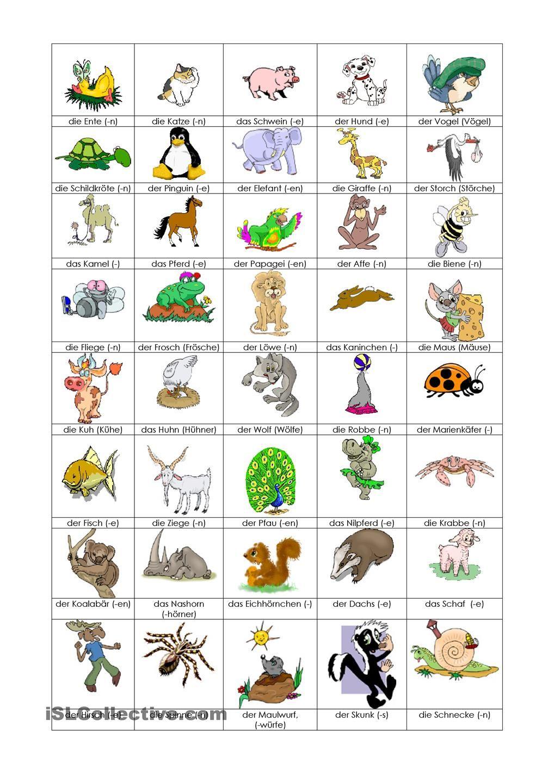 Arbeitsblatt Tiere : Tiere bilderwörterbuch … pinteres…