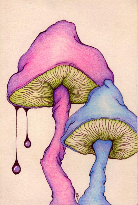 Trippy Mushroom Drawing : trippy, mushroom, drawing, Illustration&Drawing