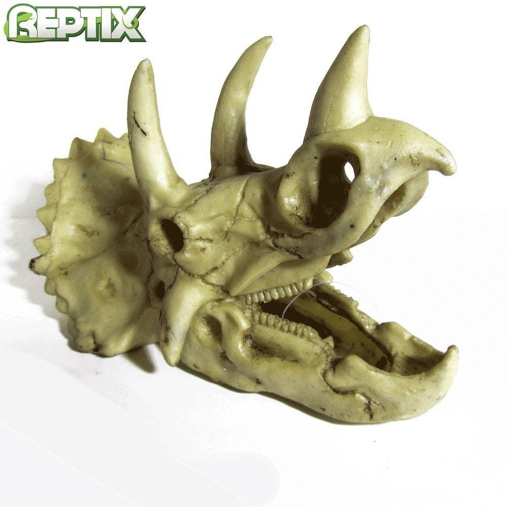 Dragon fish tank ornament - Dinosaur Skull Triceratops Aquarium Vivarium Fish Tank Ornament Fp20281