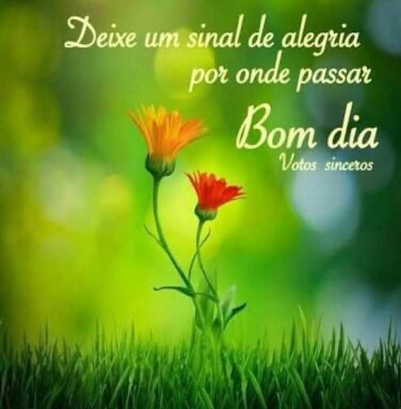 Bom Dia Deus Bom Dia Familia E Amigos E Amigas Tenha Todos Um