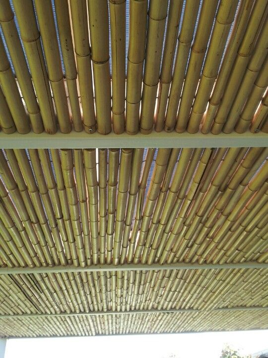 Bamboo As Outdoor Ceiling Cover