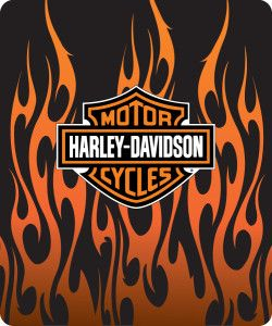 Harley Davidson Logo With Flames 1 Harley Davidson Posters Harley Davidson