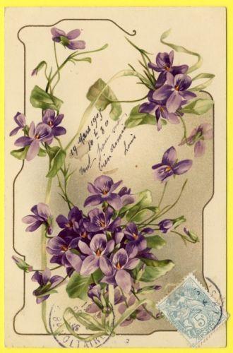 Cpa Dos 1900 Litho Illustration Art Nouveau Style Klein Fleurs