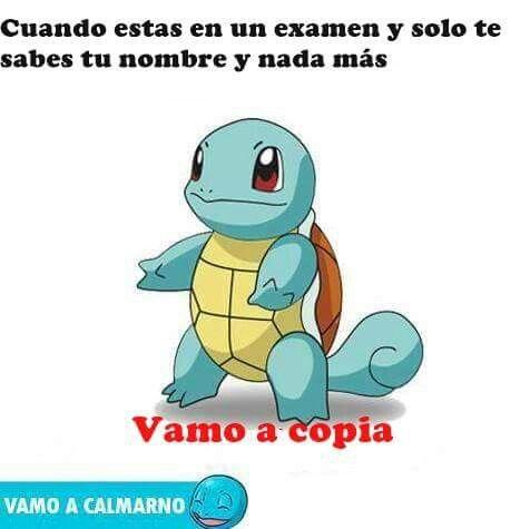 Pin De Javier Posso En Funny Wtf Vamo A Calmarno Chistes De Pokemon Memes De Tios