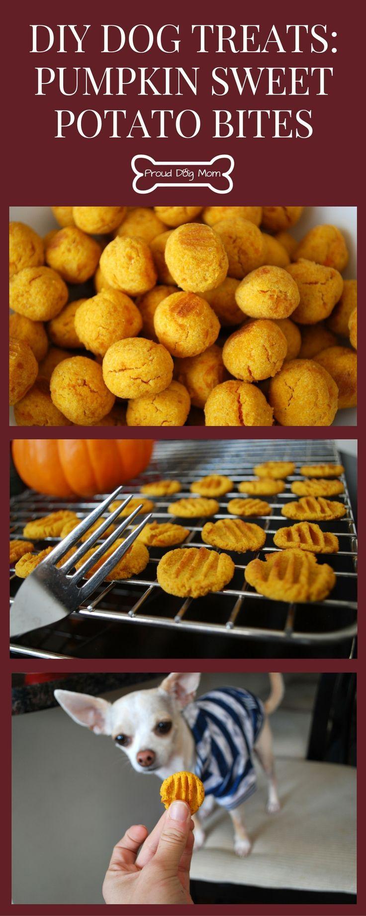 Pumpkin Sweet Potato Bites Recipe Dog Food Recipes Sweet