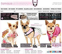 famous chihuahua clothes and accessories!