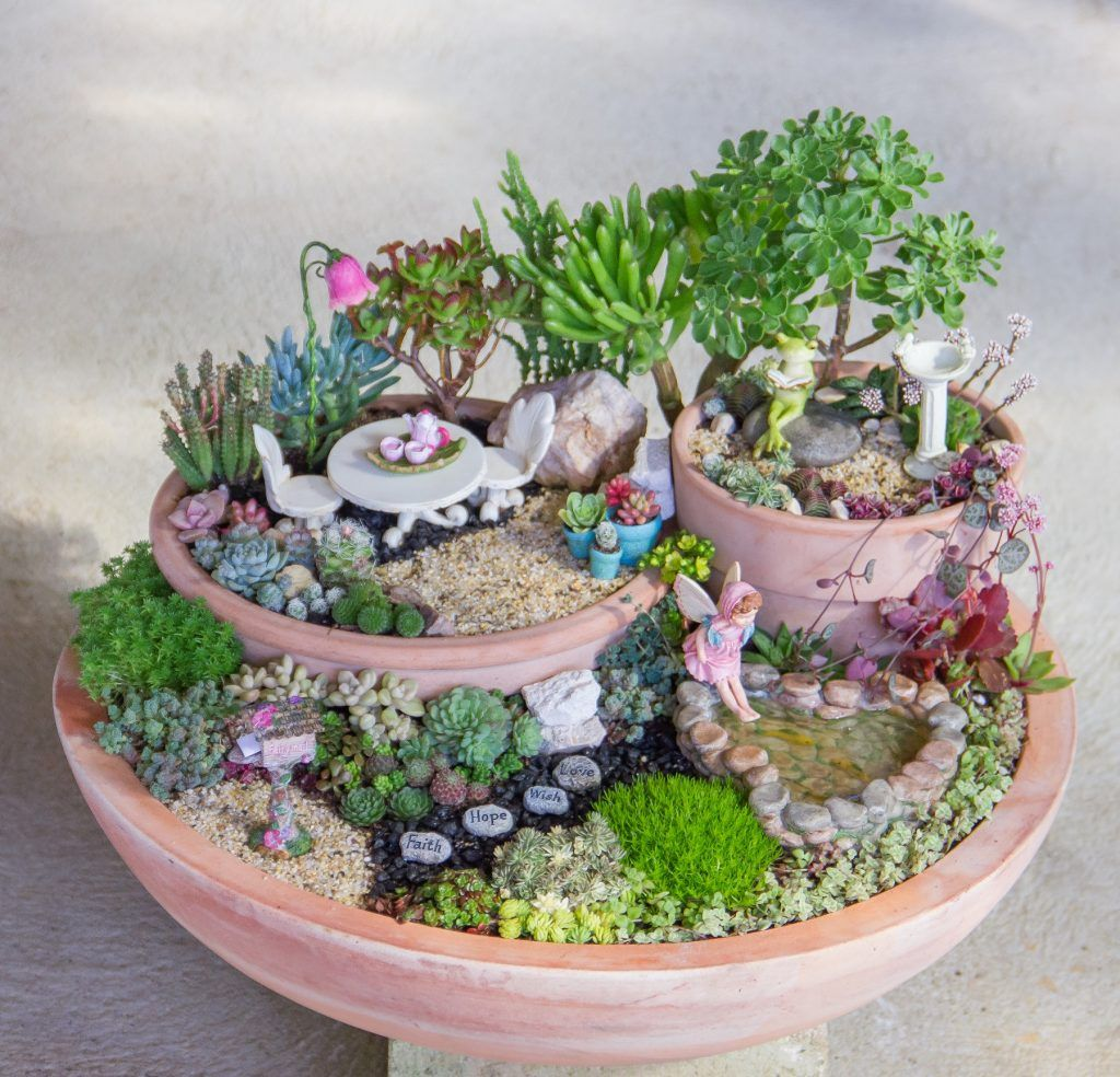 50 Beautiful Succulent Garden Ideas Varieties Succulent Garden