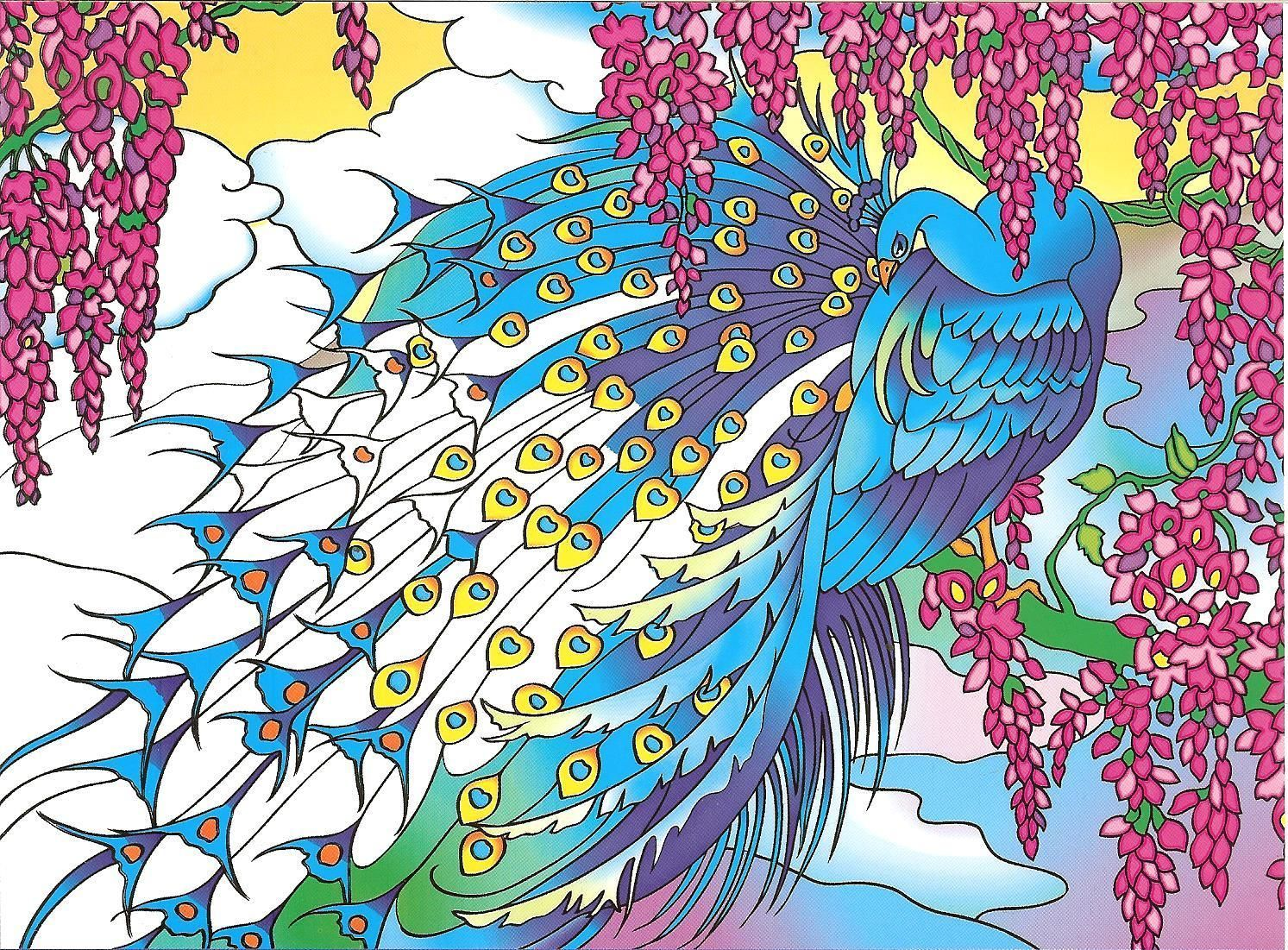 peacock designs a creative haven coloring book from dover