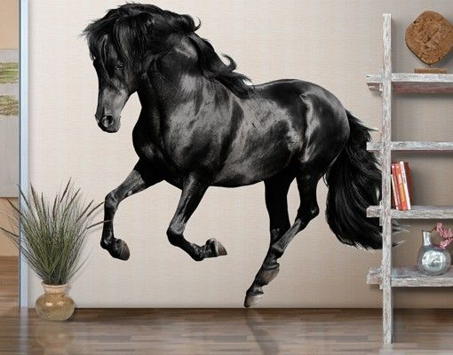 wandtattoo pferd araberhengst wandtattoo ideen wall stickers pinterest. Black Bedroom Furniture Sets. Home Design Ideas