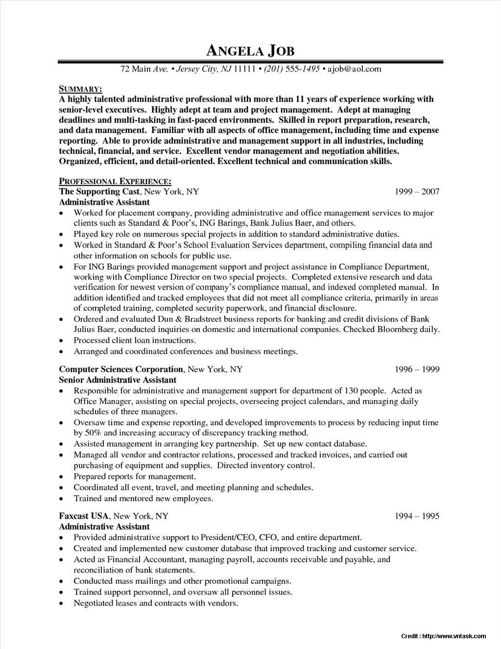 Senior Executive Resume Template 28 Images It Manager