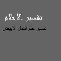 تفسير حلم النمل الابيض في المنام لابن سيرين و النابلسي Calligraphy Arabic Calligraphy