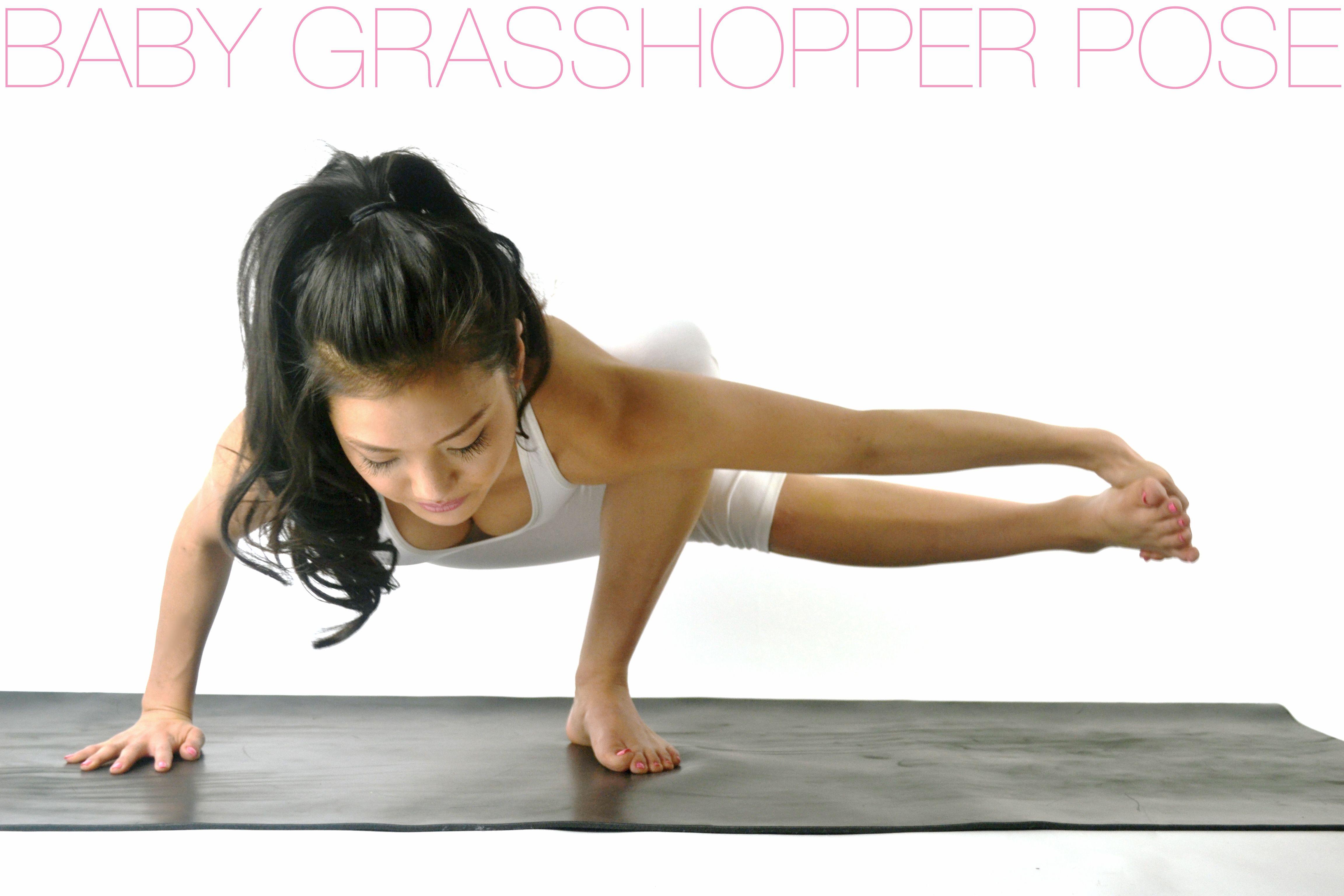 BABY GRASSHOPPER POSE  Grasshopper pose, Yoga poses, Poses
