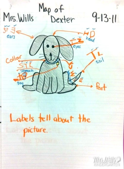 Writers Workshop: Label the Picture Lesson Ideas | TpT Misc. Lessons ...