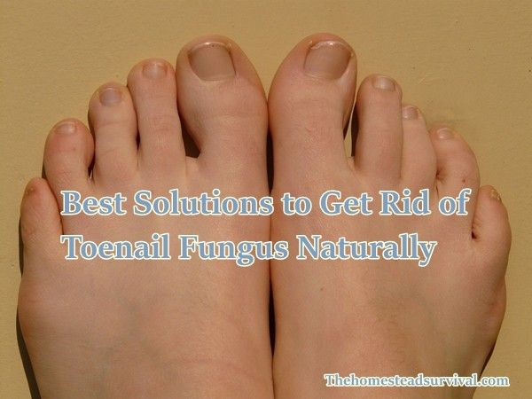 Have you noticed that your toenails are becoming yellow, thick and ...