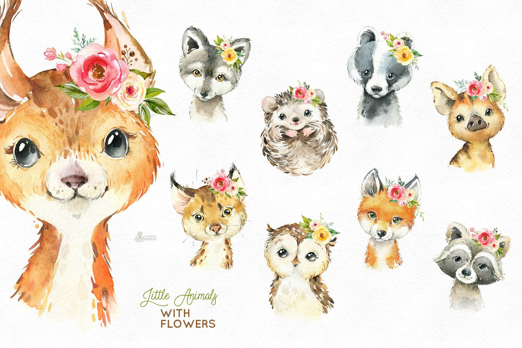 Little Animals. Woodland Collection #carefully#remove#paper#background
