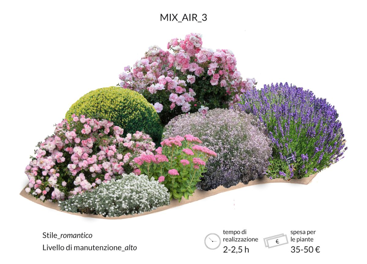 Giardino romantico aiuola romantica rose bosso lavanda for Cespugli giardino