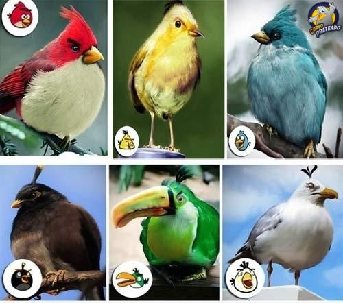 #Angry #Birds ♥