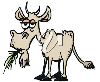 old goat clip art animated goat clipart cliparthut free rh pinterest co uk free billy goat clipart