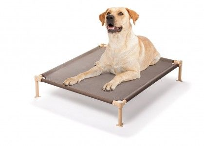The Best Elevated Cooling Dog Beds 2020 Perfect For Large Dogs