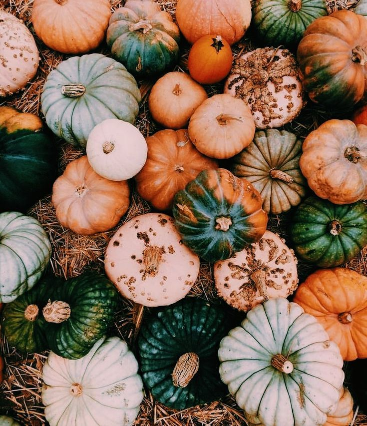 Pinterest: carolinefaith417★   - Autum - #autum #carolinefaith417 #Pinterest #octoberwallpaperiphone