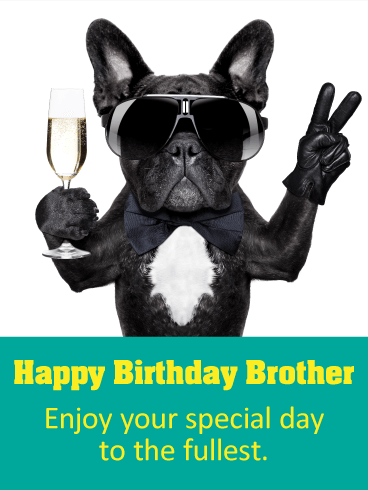 Party Dog Happy Birthday Card For Brother Is Your Brother A Cool