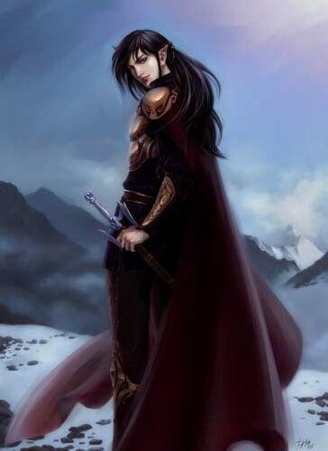 Dark Haired Elf Man Elf Characters Elves Character Art