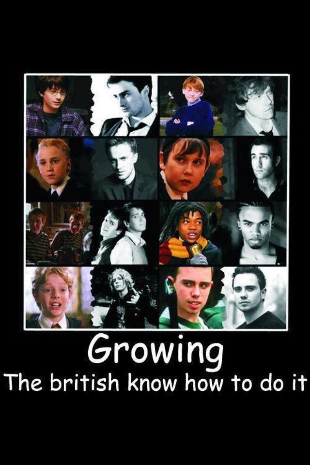 So True Harry Potter Harry Potter Tumblr Harry Potter Love