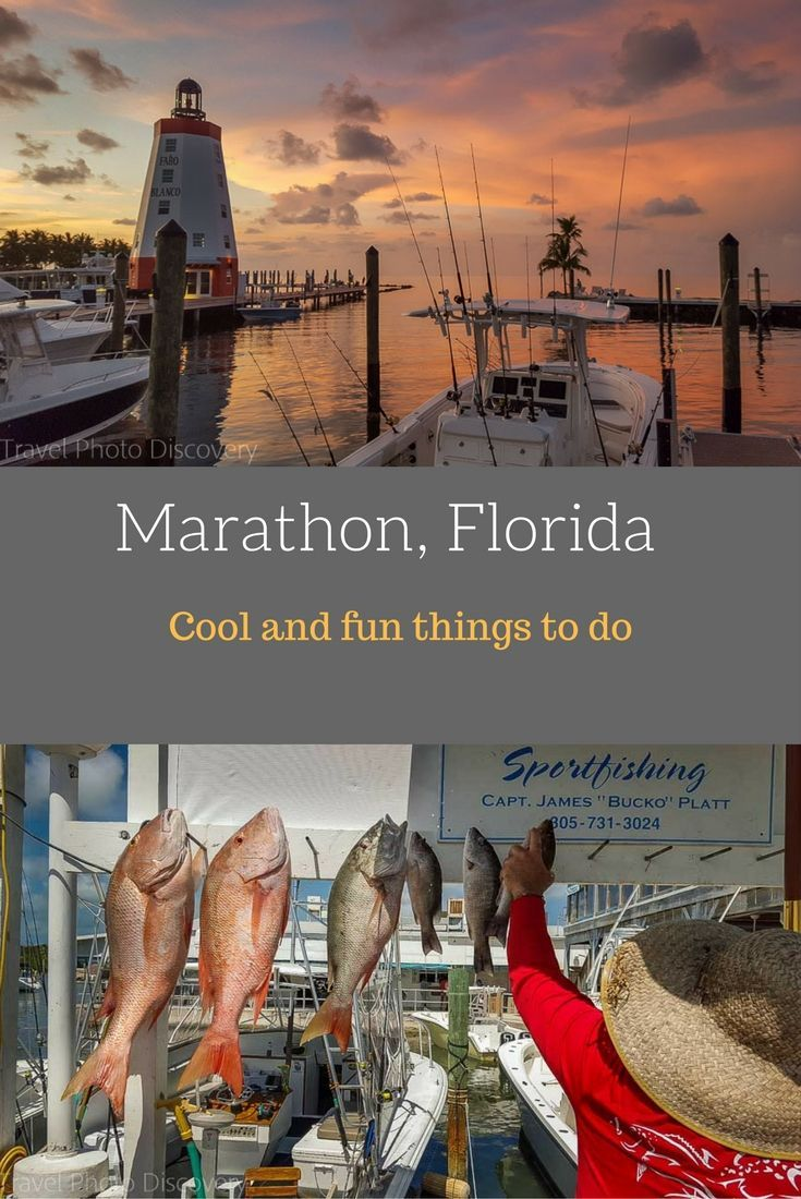 Florida Keys Things To Do On Marathon Florida Highlights Of Recreation And Sports Dining