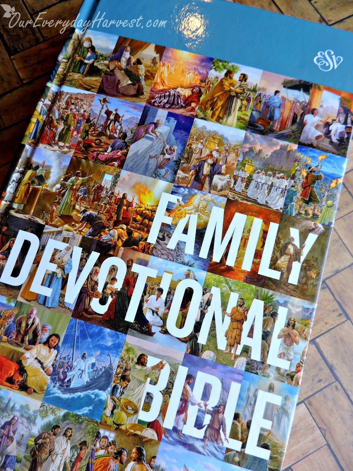 Esv family devotional bible review giveaway family